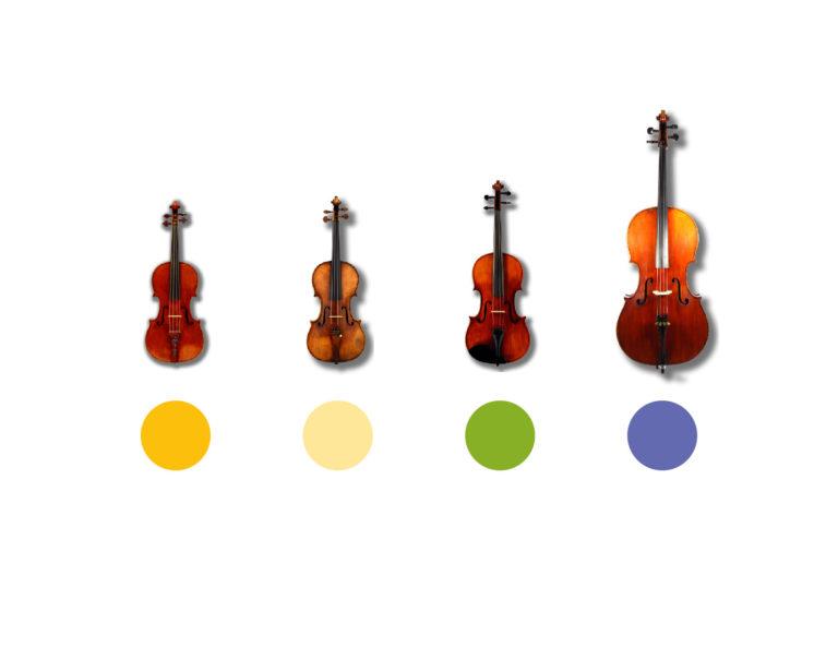 Come i 4 strumenti del Quartetto d'Archi vengono rappresentati da 4 colori