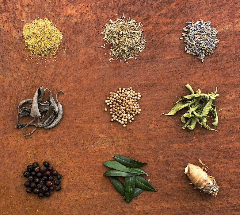 dimore quartetto botaniche sabatini gin