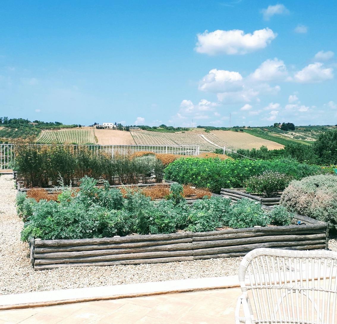 dimore quartetto newsletter aloisa planeta giardino aromatico