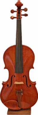dimore quartetto violino 11