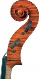 dimore quartetto violoncello30