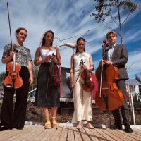 dimore quartetto momentum quartet 2