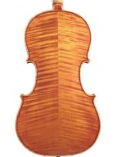 dimore quartetto viola capicchioni verchiani farulli c-min