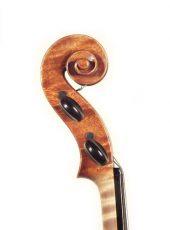 dimore quartetto violino sderci verchiani farulli b