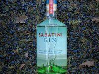 m_sabatini gin